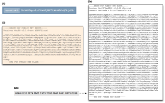 What's the matter with PGP? – A Few Thoughts on