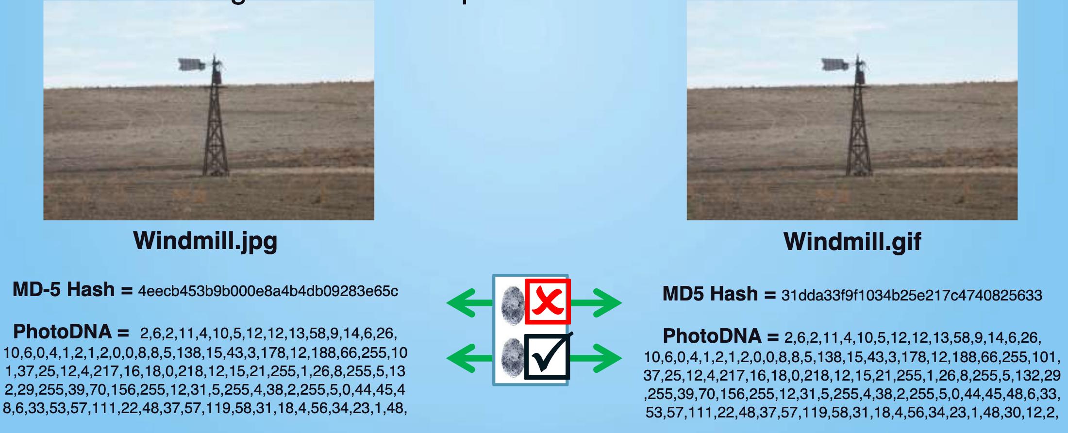 photodna2